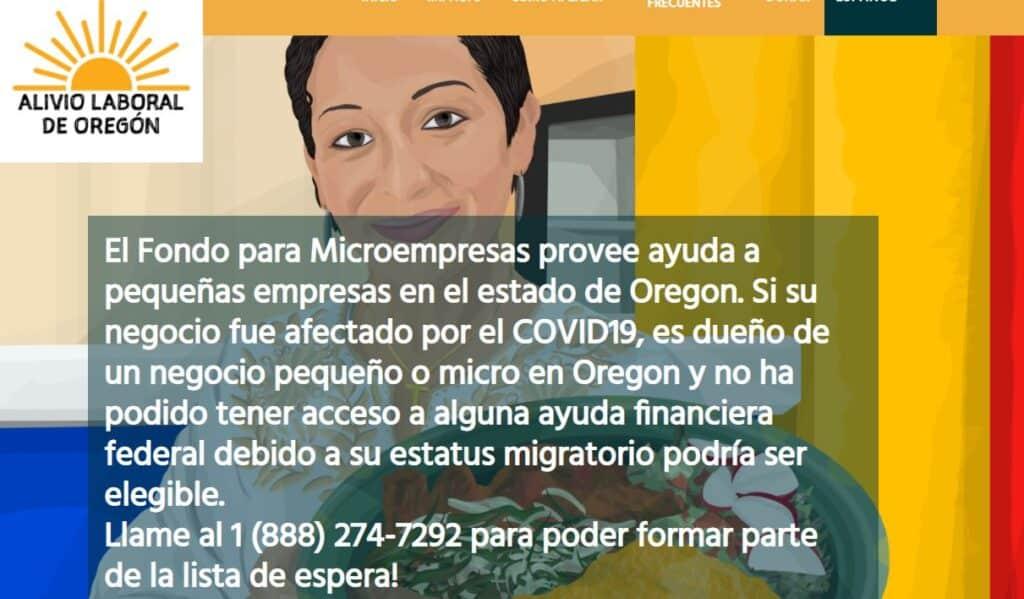 Fondo de Microempresas image